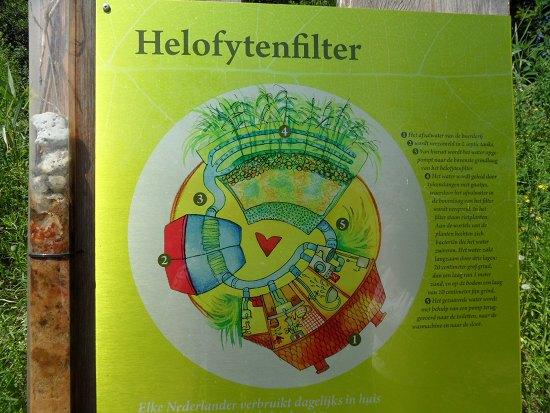 Schematische weergave van het helofytenfilter dat het grijze water zuivert
